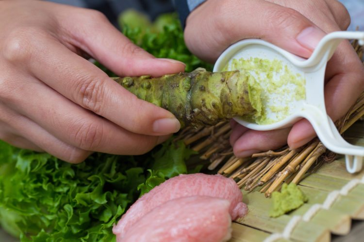 fresh wasabi, a Japanese housewife scraping fresh wasabi root to eat with Nigiri Otoro sushi in the kitchen